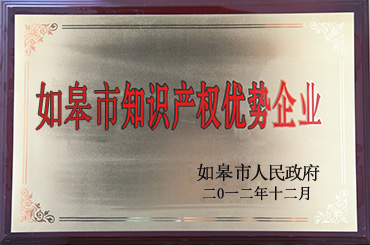 Rugao Outstanding Enterprise of Intellectual Property